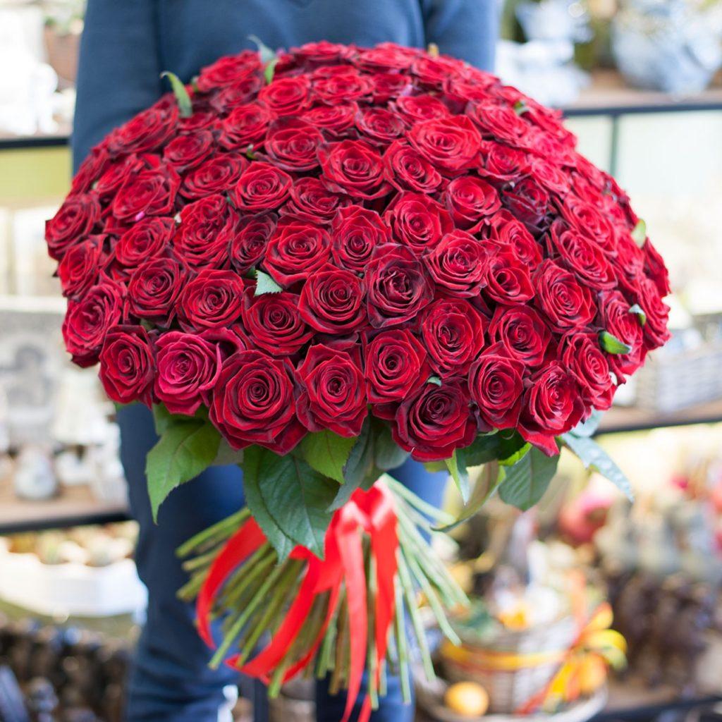 Картинка больших цветов роз